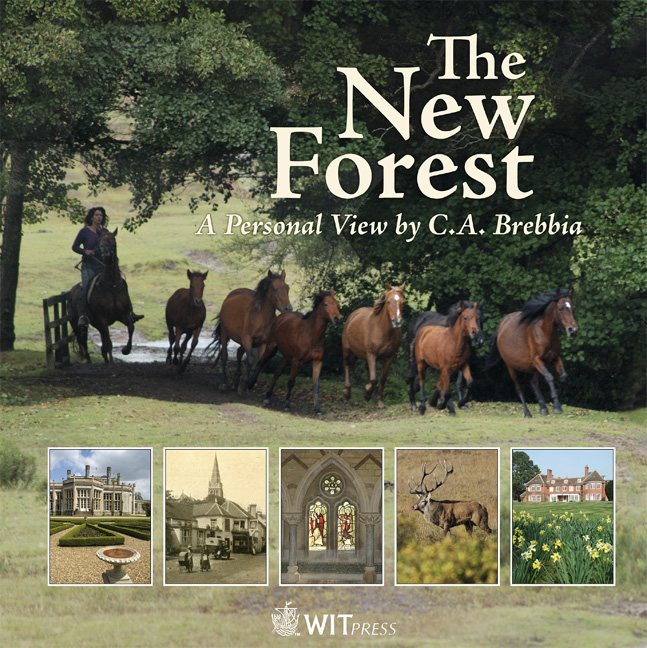 Cover of The New Forest
